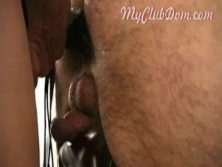 Tight Amateur Ass Fucked By Professional Mistress