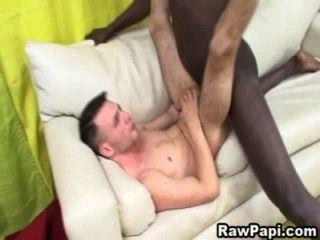 Latino Sucked A Black Huge Cock