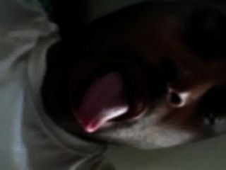 I Need A Nice Wet Juicy Phat Pussy To Lick And Tongue Fuck