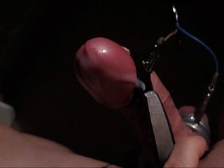 curious kori rides the cock with you agree