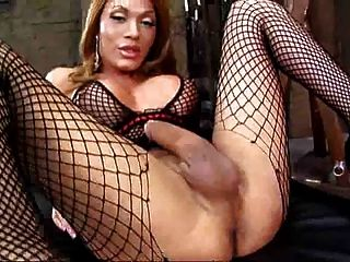 Mega Slut Shemale With Big Dick Wanking Solo By Troc