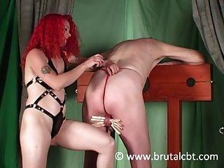 Sexy voluptuous well endowed women