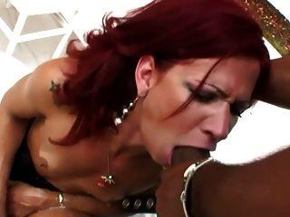 Transes Fuck Scenes