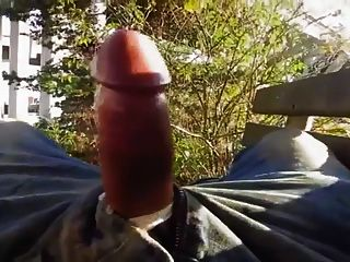 Str8 Guy Hands Free In Park On Bench