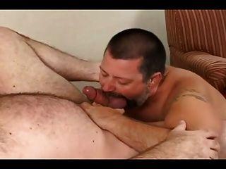 Bear Suck Bear 9