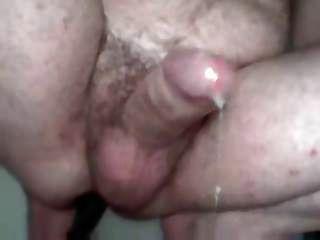 Bear Milking