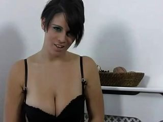 Short Haired Brit. Joi