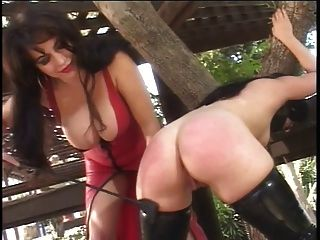 Slut Bound By The Tree And Smacked