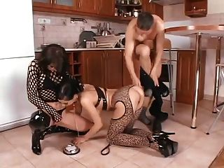 Two Kittens In Heat Fucked In The Kitchen