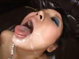 Japan Swallowers