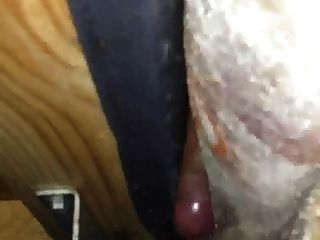 Fucking And Cum Between The Sofa