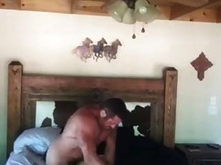 Vebal White Cowboy Breeds Black Jock Bitch