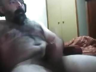 Hot Hairy Bear 29917