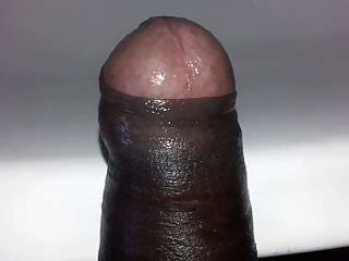 Look At My Cock. My Cock Is Amazing